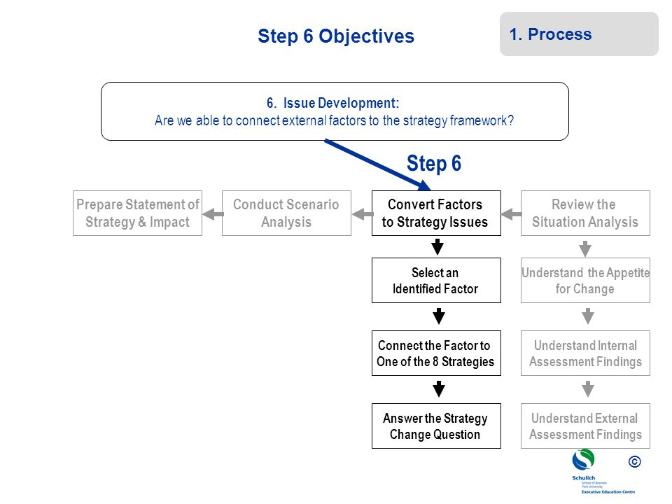 © Step 6 Objectives Prepare Statement of Strategy & Impact Conduct Scenario Analysis Convert Factors to Strategy Issues Review the Situation Analysis