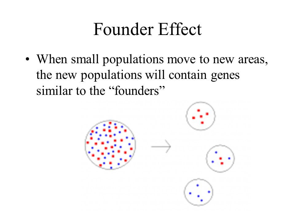 differences in survival or reproduction leads to adaptation differences in fitness How does genetic structure change.