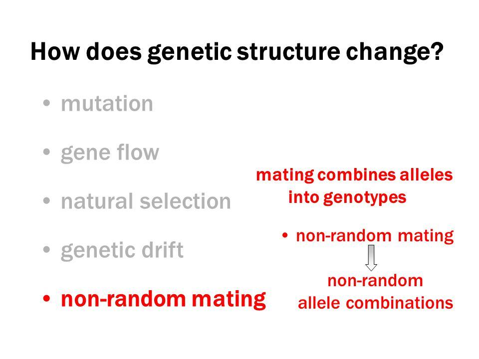 Non-Random Mating In nature, no species truly mates randomly.
