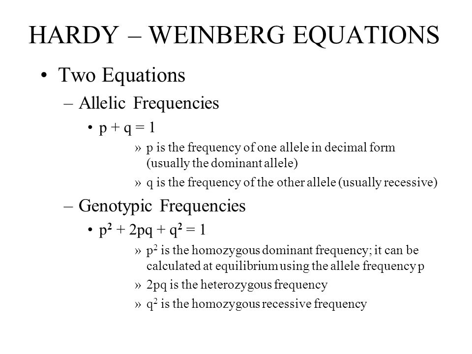 HARDY – WEINBERG EQUATIONS Two Equations –Allelic Frequencies p + q = 1 »p is the frequency of one allele in decimal form (usually the dominant allele) »q is the frequency of the other allele (usually recessive) –Genotypic Frequencies p 2 + 2pq + q 2 = 1 »p 2 is the homozygous dominant frequency; it can be calculated at equilibrium using the allele frequency p »2pq is the heterozygous frequency »q 2 is the homozygous recessive frequency