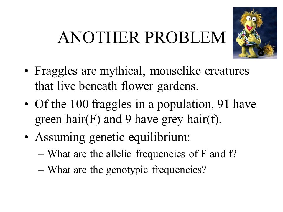 ANOTHER PROBLEM Fraggles are mythical, mouselike creatures that live beneath flower gardens.