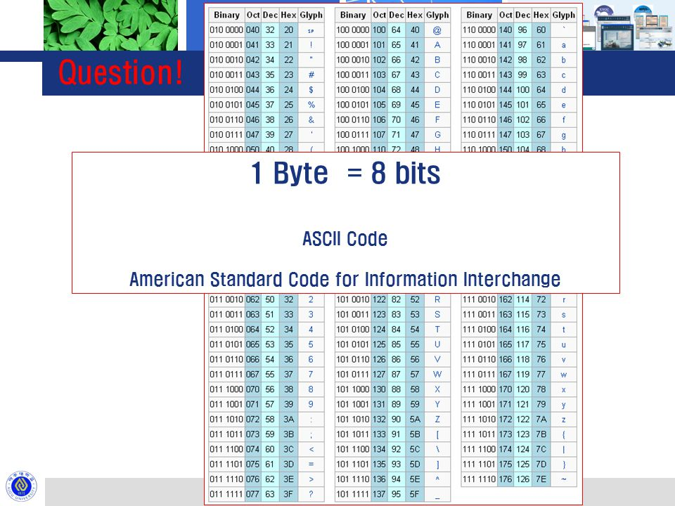 Question! 01000001 1 Byte = 8 bits ASCII Code American Standard Code for Information Interchange