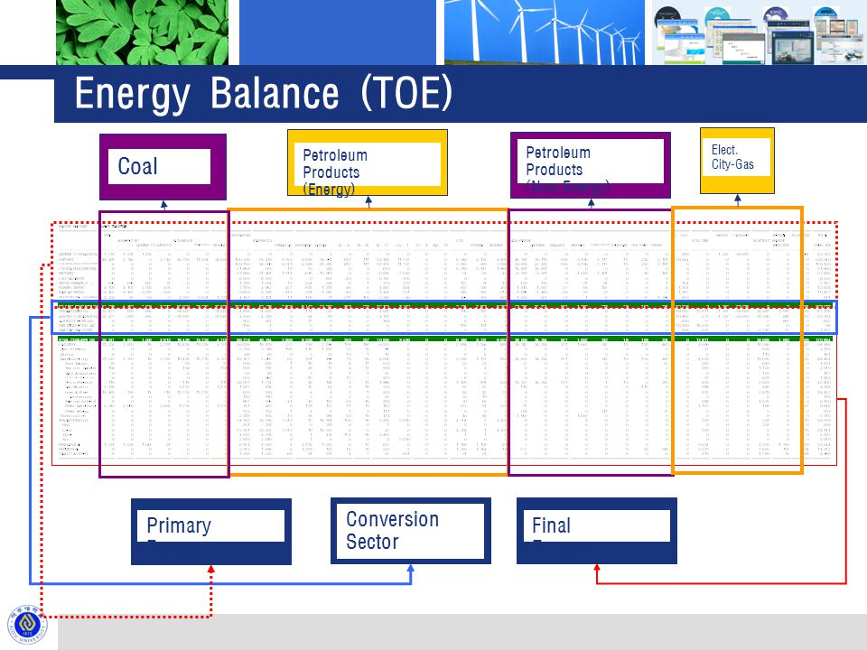Energy Balance (TOE) Primary Energy Conversion Sector Final Energy Petroleum Products (Energy) Petroleum Products (Non-Energy) Coal Elect.