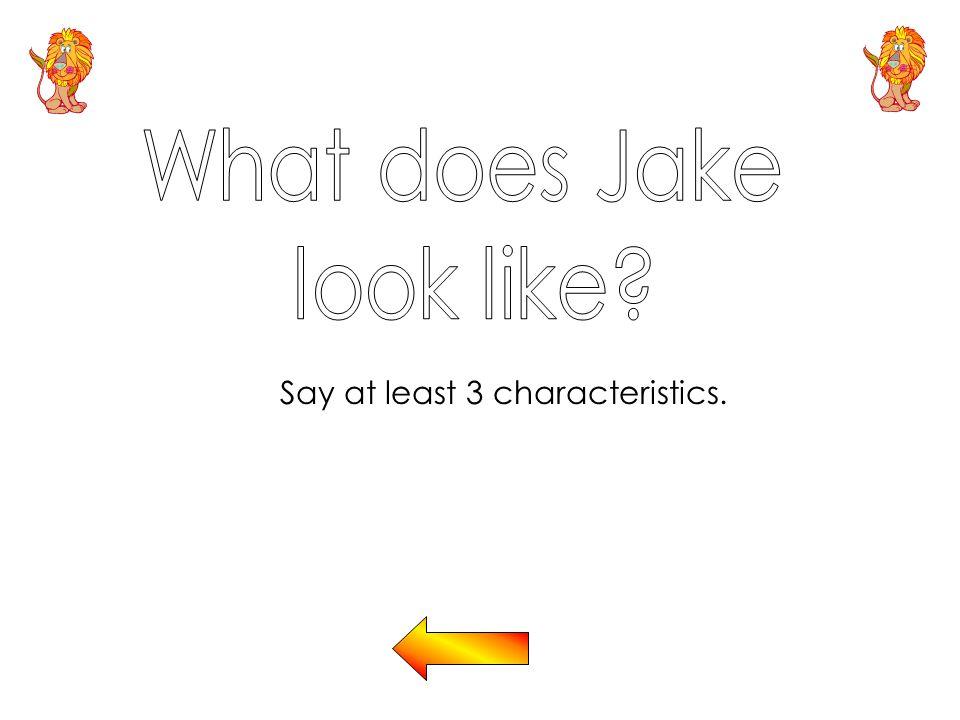 Say at least 3 characteristics.