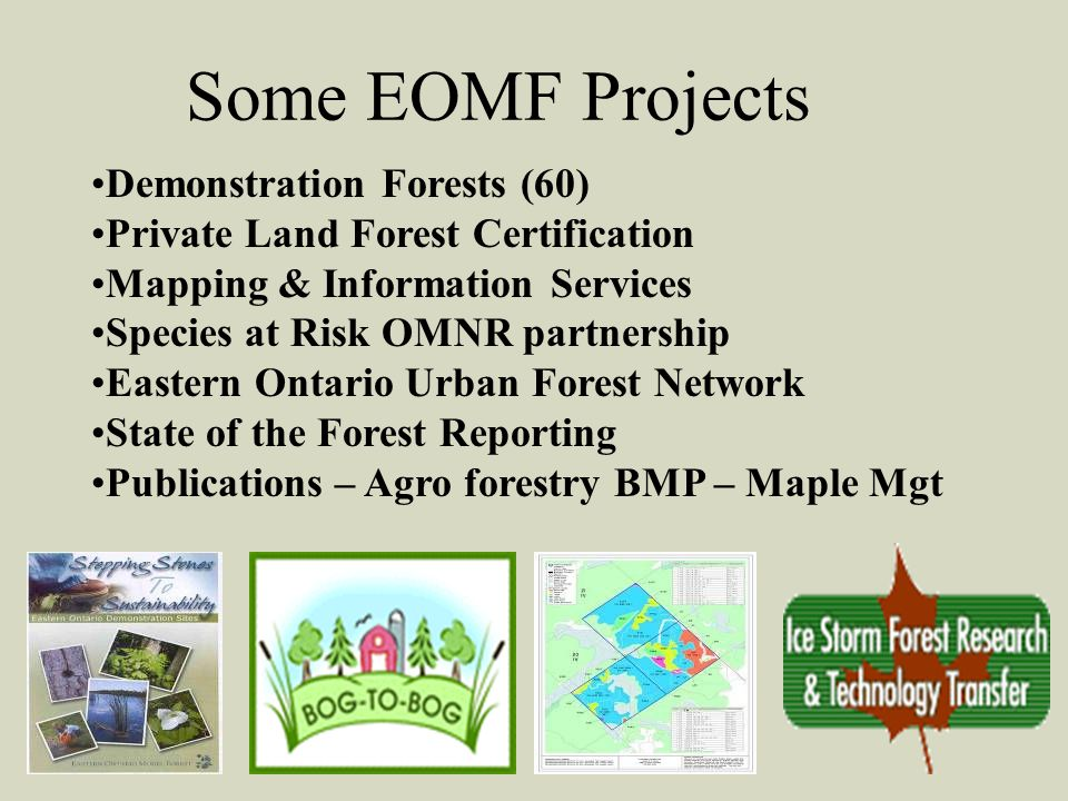 Some EOMF Projects Demonstration Forests (60) Private Land Forest Certification Mapping & Information Services Species at Risk OMNR partnership Eastern Ontario Urban Forest Network State of the Forest Reporting Publications – Agro forestry BMP – Maple Mgt