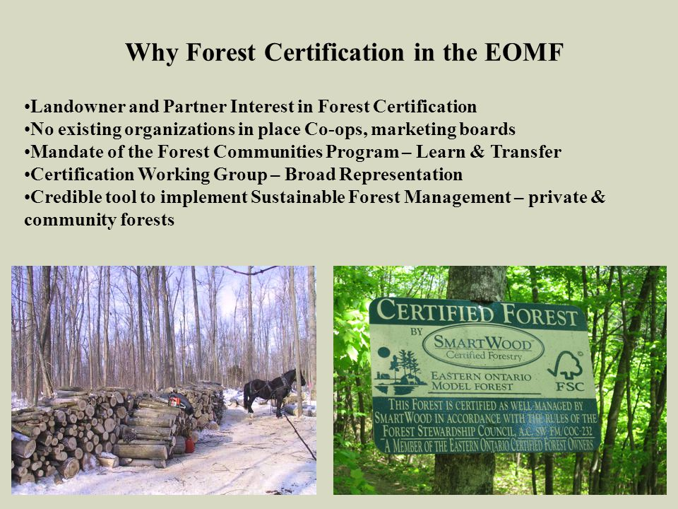 Why Forest Certification in the EOMF Landowner and Partner Interest in Forest Certification No existing organizations in place Co-ops, marketing board