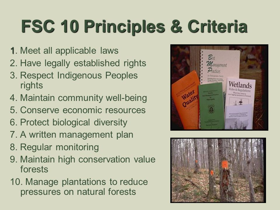 FSC 10 Principles & Criteria 1 1. Meet all applicable laws 2. Have legally established rights 3. Respect Indigenous Peoples rights 4. Maintain communi