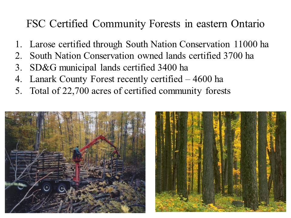 FSC Certified Community Forests in eastern Ontario 1.Larose certified through South Nation Conservation 11000 ha 2.South Nation Conservation owned lands certified 3700 ha 3.SD&G municipal lands certified 3400 ha 4.Lanark County Forest recently certified – 4600 ha 5.Total of 22,700 acres of certified community forests