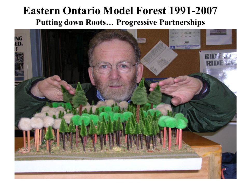 From IRM to SFM –TOE Trails and Outdoor Education –FFC-Forming the Ferguson Forest Centre –Ice Storm Response –Private Woodlot Strategic Initiatives –