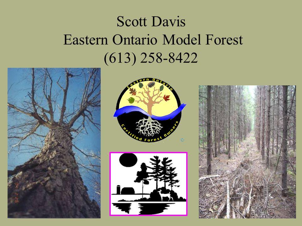 Scott Davis Eastern Ontario Model Forest (613) 258-8422