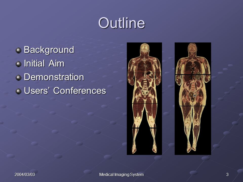 32004/03/03Medical Imaging System Outline Background Initial Aim Demonstration Users' Conferences