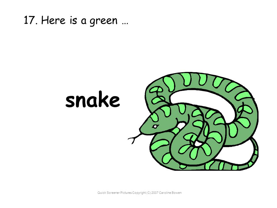 Quick Screener Pictures Copyright (C) 2007 Caroline Bowen 17. Here is a green … snake