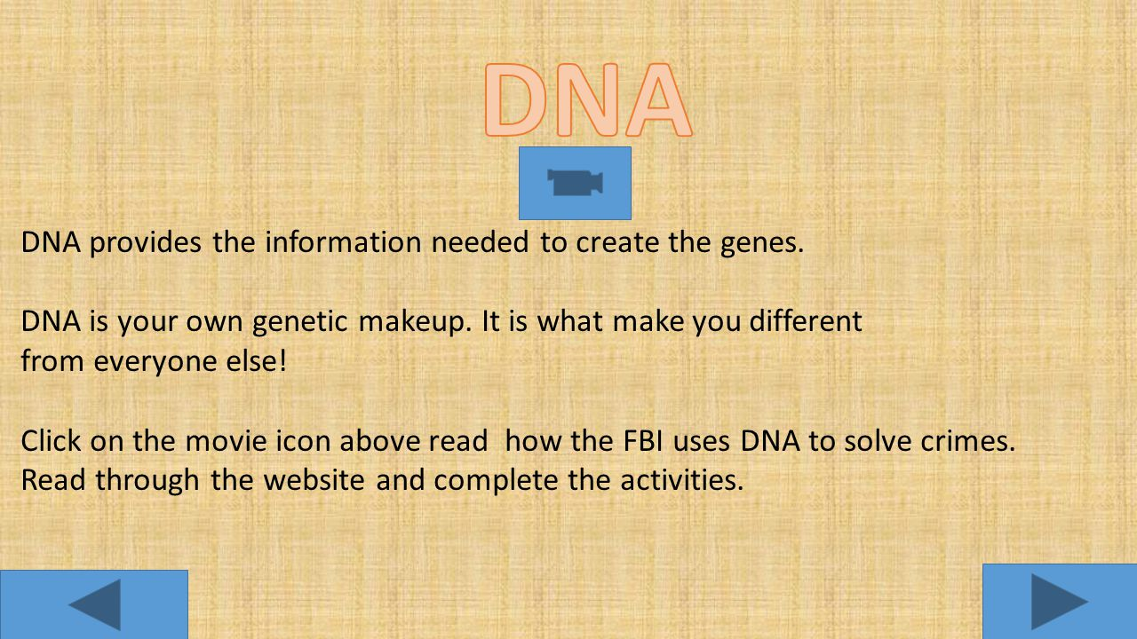 DNA provides the information needed to create the genes. DNA is your own genetic makeup. It is what make you different from everyone else! Click on th