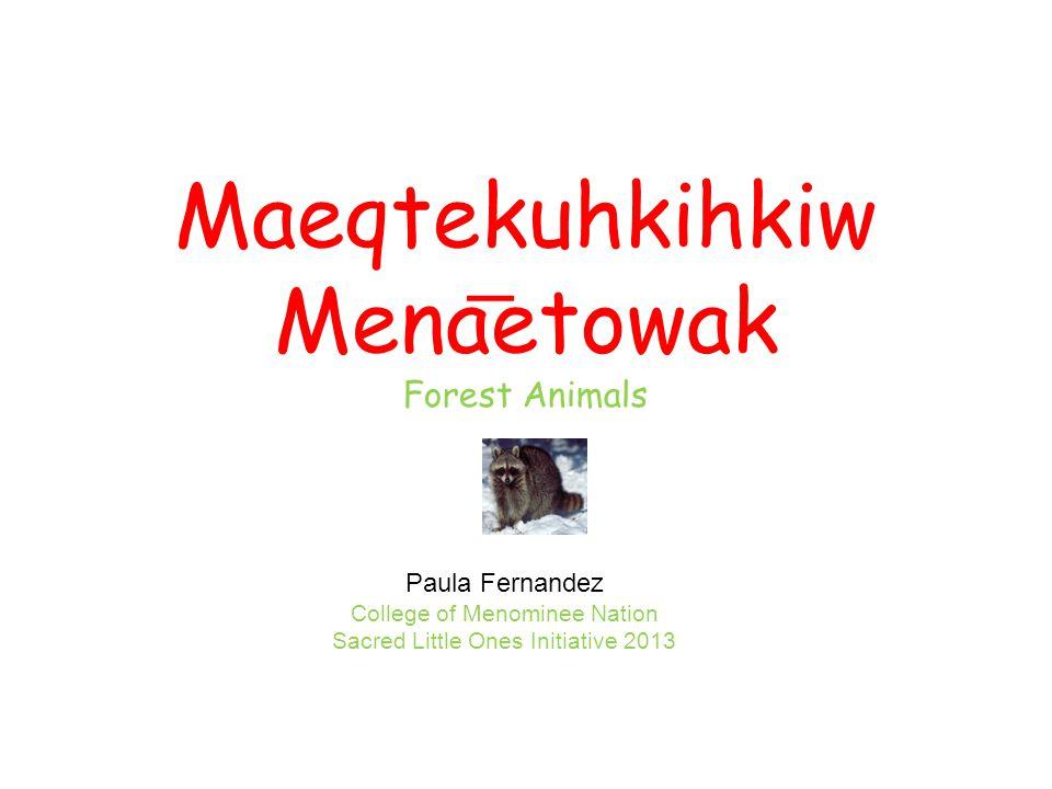 Maeqtekuhkihkiw Menaetowak Forest Animals Paula Fernandez College of Menominee Nation Sacred Little Ones Initiative 2013