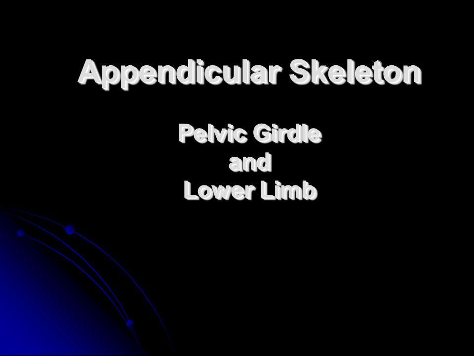 Appendicular Skeleton Pelvic Girdle and Lower Limb