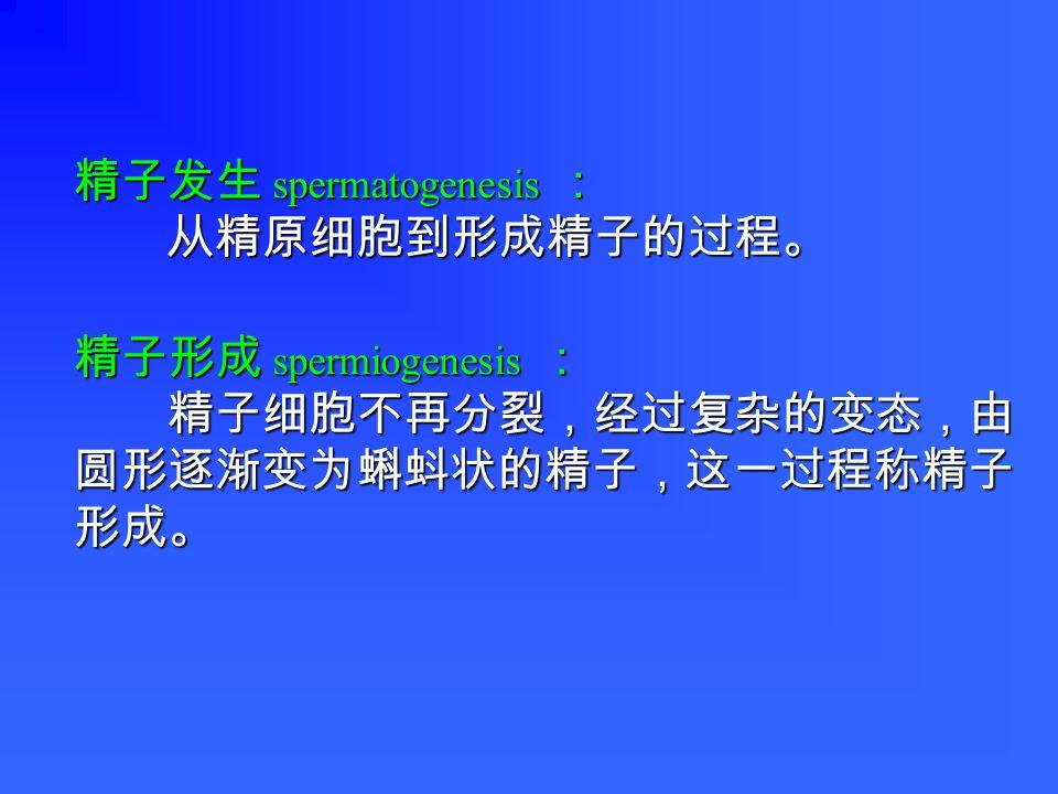 精原细胞 精原细胞 46 , XY ( 2n DNA ) 46 , XY ( 2n DNA ) 初级精母细胞 初级精母细胞 46 , XY ( 4n DNA ) 46 , XY ( 4n DNA ) 次级精母细胞 次级精母细胞 23 , X ( 2n DNA ) 23 , X ( 2n DNA ) 次级精母细胞 次级精母细胞 23 , Y ( 2n DNA ) 23 , Y ( 2n DNA ) 精子细胞 精子细胞 23 , X ( 1n DNA ) 23 , X ( 1n DNA ) 精子细胞 精子细胞 23 , X ( 1n DNA ) 23 , X ( 1n DNA ) 精子细胞 精子细胞 23 , Y ( 1n DNA ) 23 , Y ( 1n DNA ) 精子细胞 精子细胞 23 , Y ( 1n DNA ) 23 , Y ( 1n DNA ) 精子 精子 23 , X ( 1n DNA ) 23 , X ( 1n DNA ) 精子 精子 23 , X ( 1n DNA ) 23 , X ( 1n DNA ) 精子 精子 23 , Y ( 1n DNA ) 23 , Y ( 1n DNA ) 第一次减数分裂 第二次减数分裂 增殖 精子 精子 23 , Y ( 1n DNA ) 23 , Y ( 1n DNA ) 减数分裂 精子形成