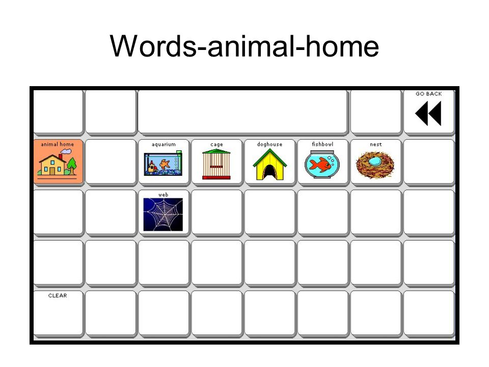 Words-animal-home