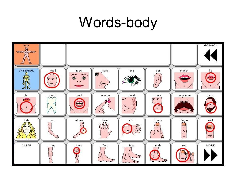 Words-body