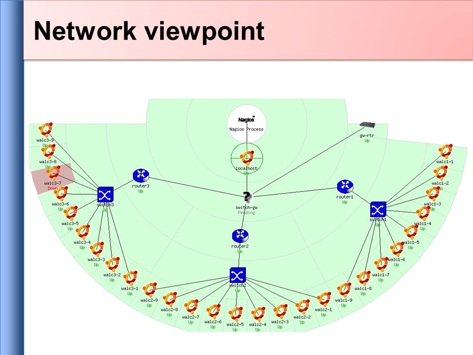 Network viewpoint
