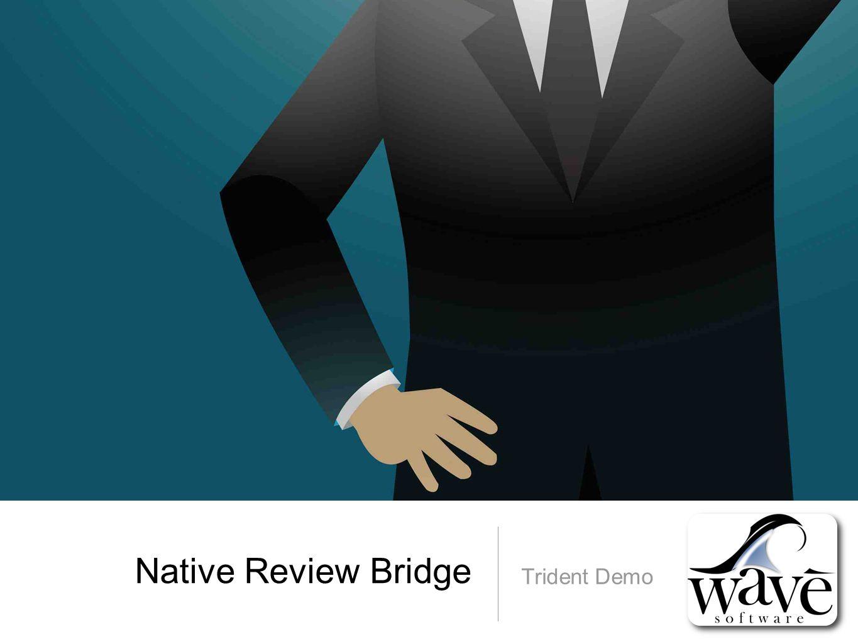 Native Review Bridge Trident Demo