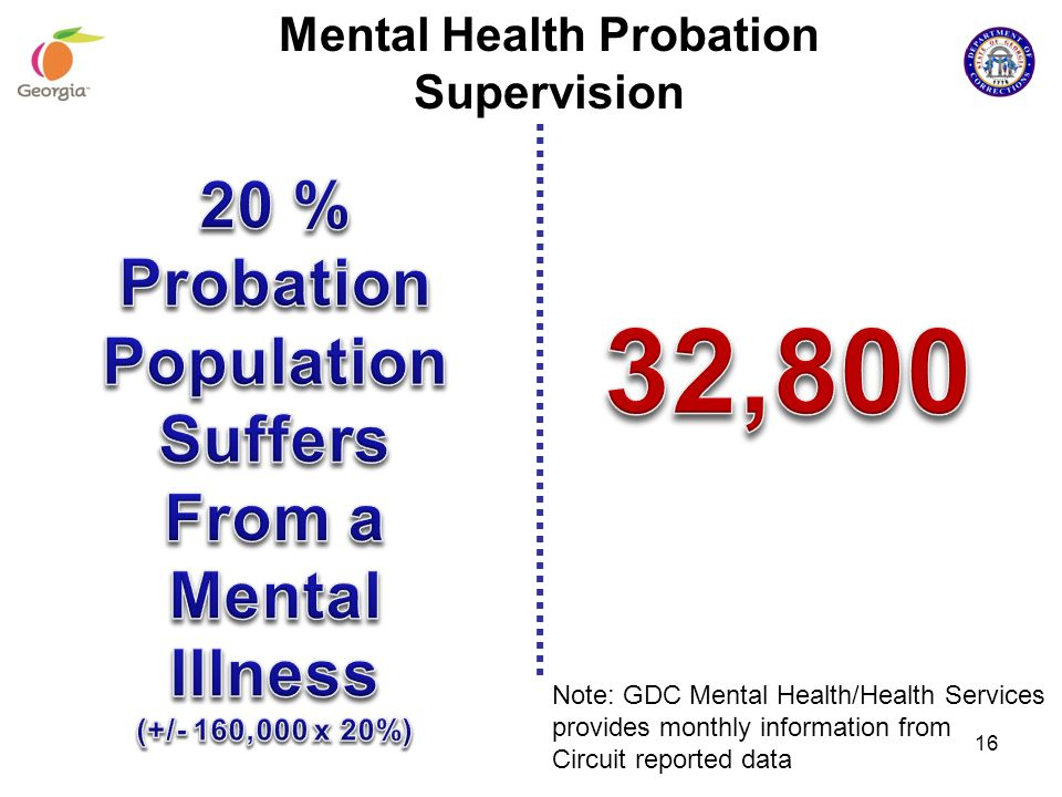 Note: GDC Mental Health/Health Services provides monthly information from Circuit reported data 16