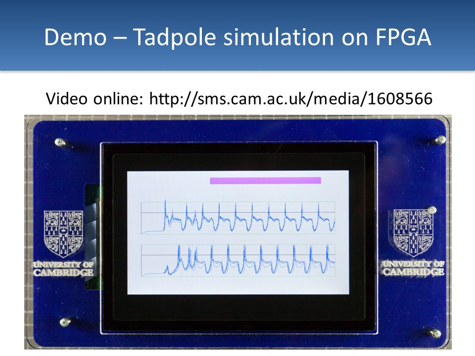 Demo – Tadpole simulation on FPGA Video online: http://sms.cam.ac.uk/media/1608566