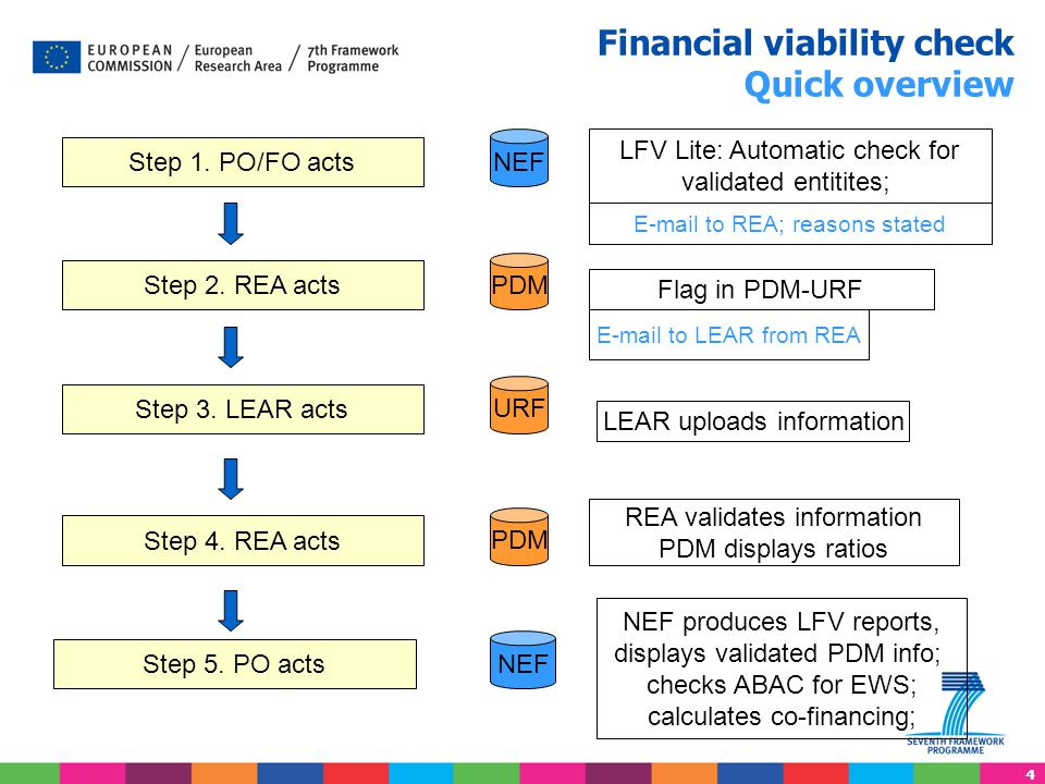 5 Legal and Financial Verification LFV LITE - NEF Financial viability check - NEF