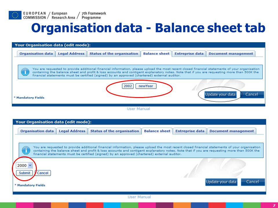 8 Enter the Simplified Balance Sheet information Same view for the 'LFV Simulation' under the Portal