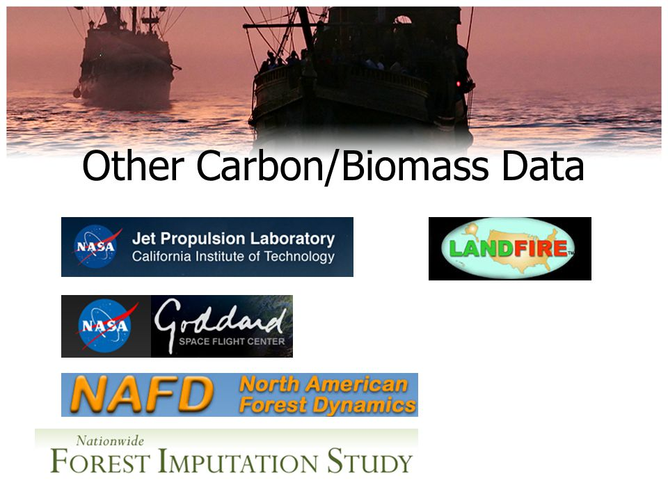 Other Carbon/Biomass Data