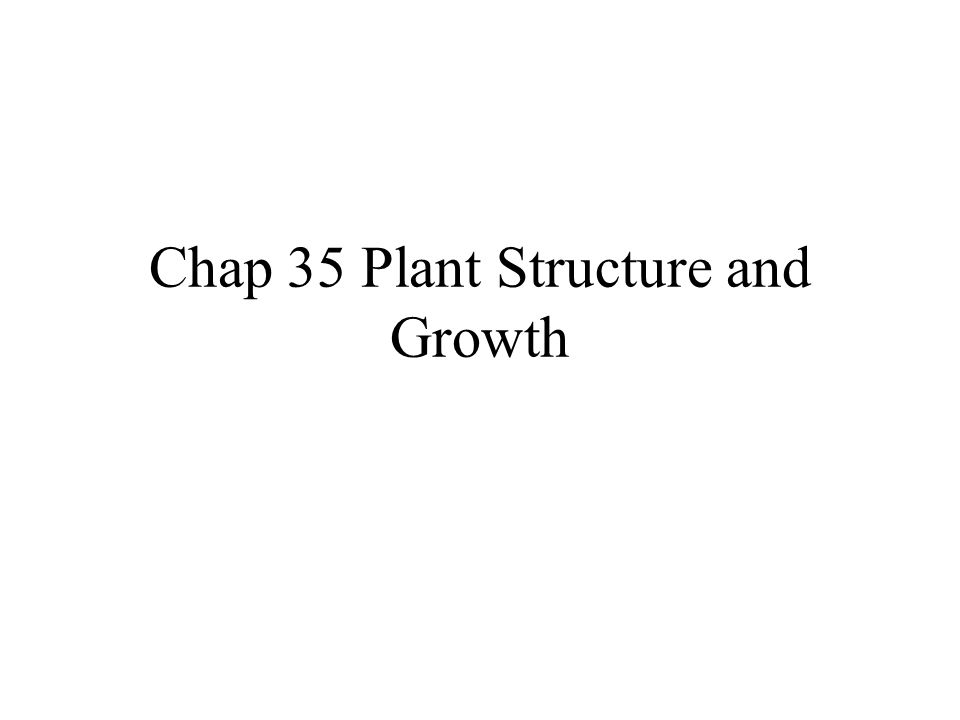 Chap 35 Plant Structure and Growth