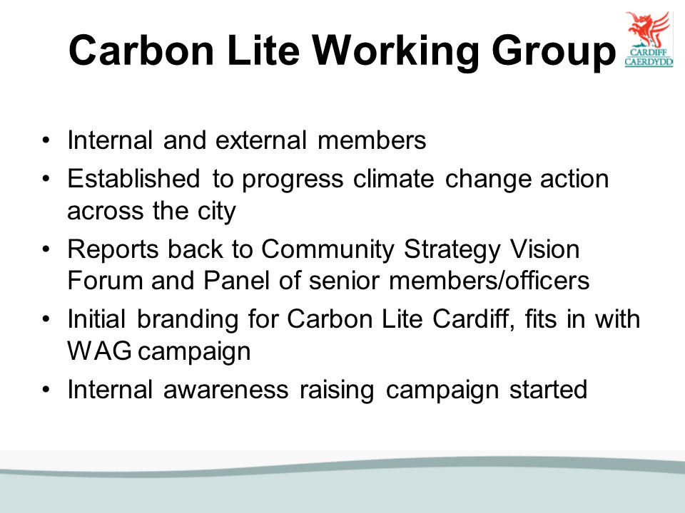 Carbon Lite Working Group Internal and external members Established to progress climate change action across the city Reports back to Community Strate
