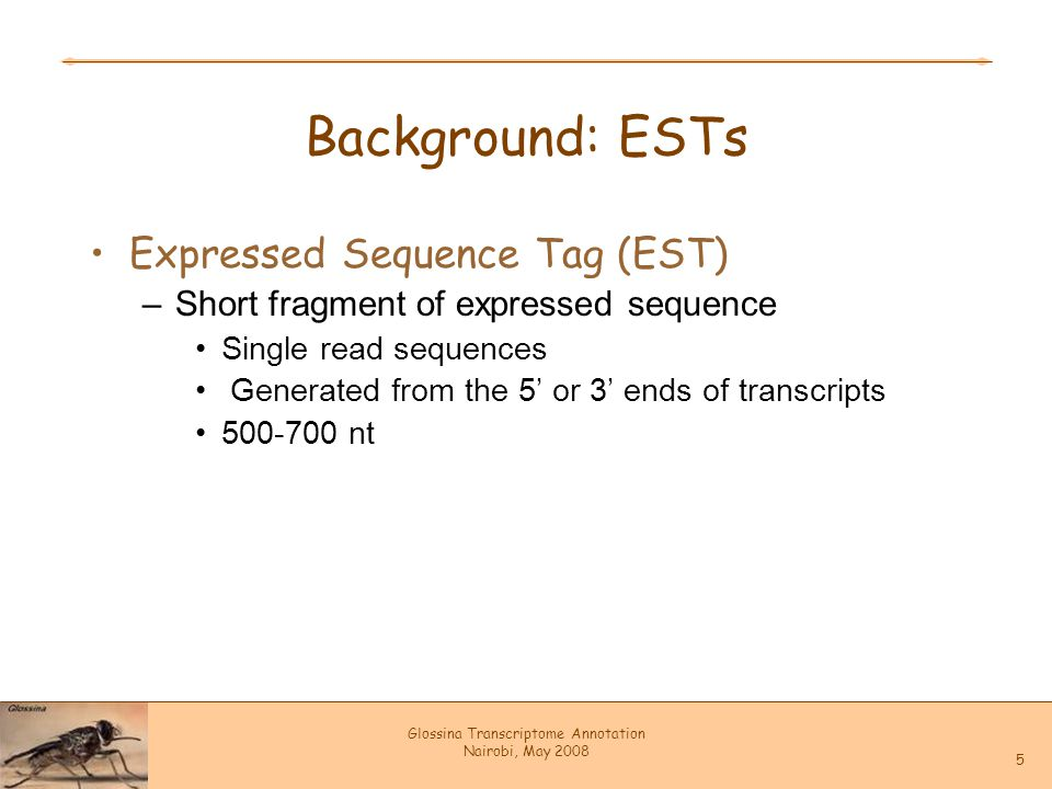 Glossina Transcriptome Annotation Nairobi, May 2008 5 Background: ESTs Expressed Sequence Tag (EST) –Short fragment of expressed sequence Single read