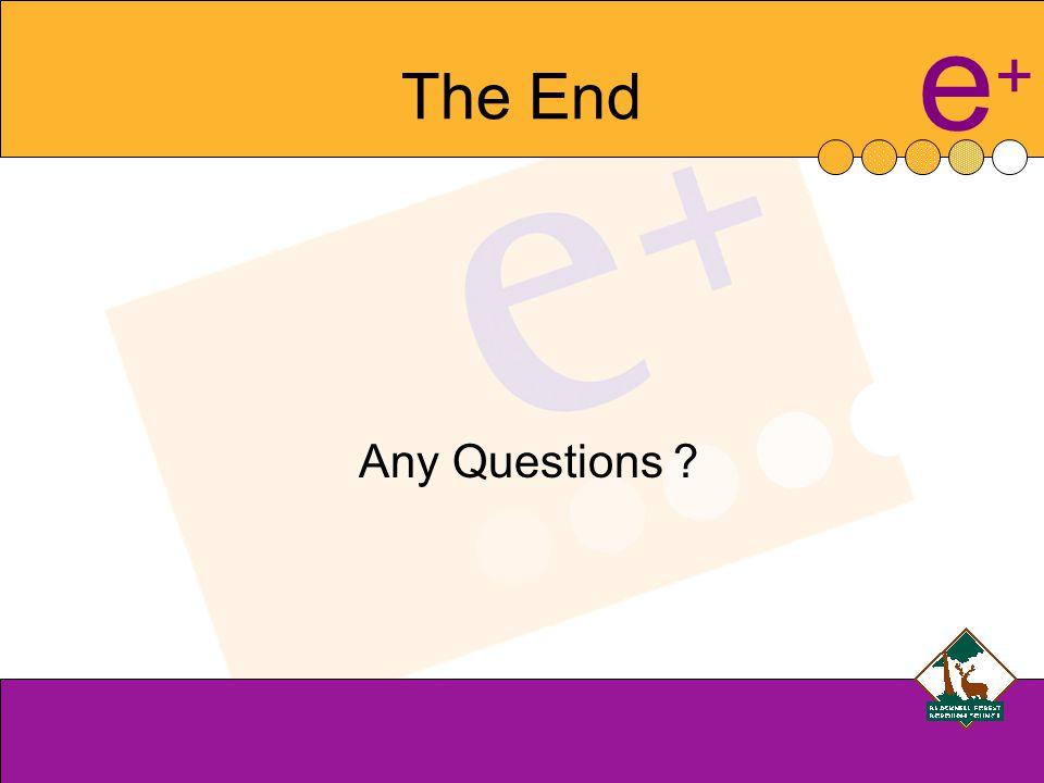 e+e+ The End Any Questions