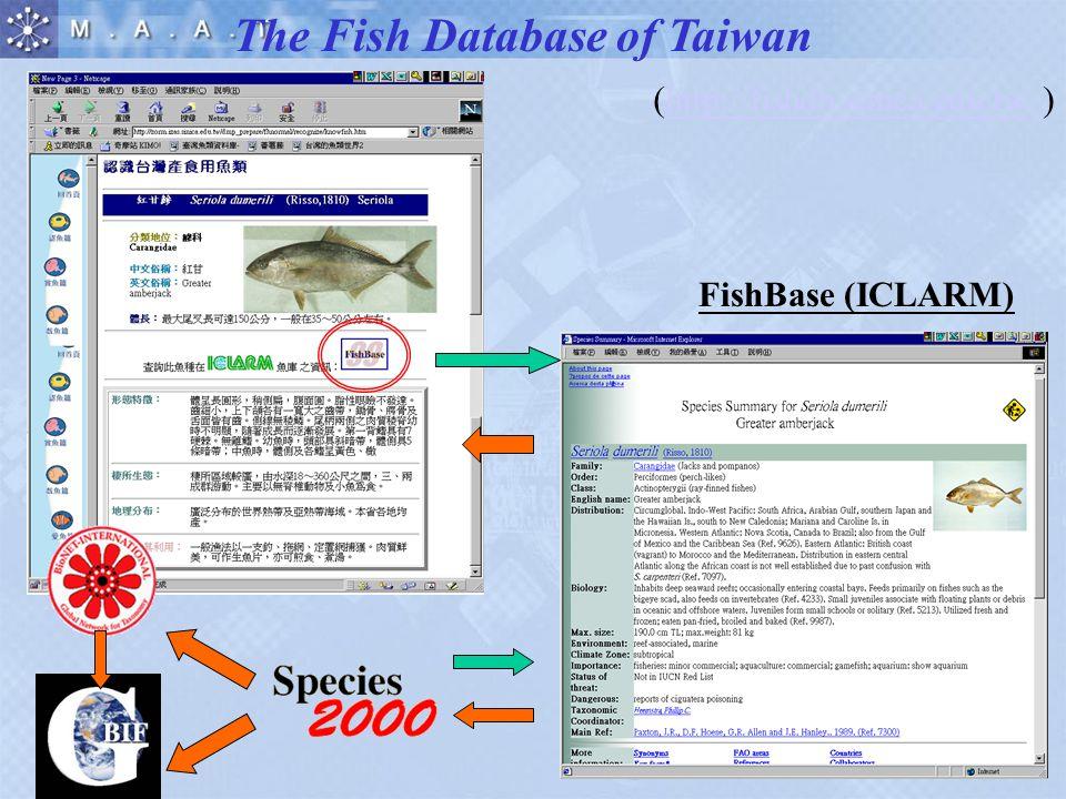 FishBase (ICLARM) The Fish Database of Taiwan (http://fishdb.sinica.edu.tw )http://fishdb.sinica.edu.tw