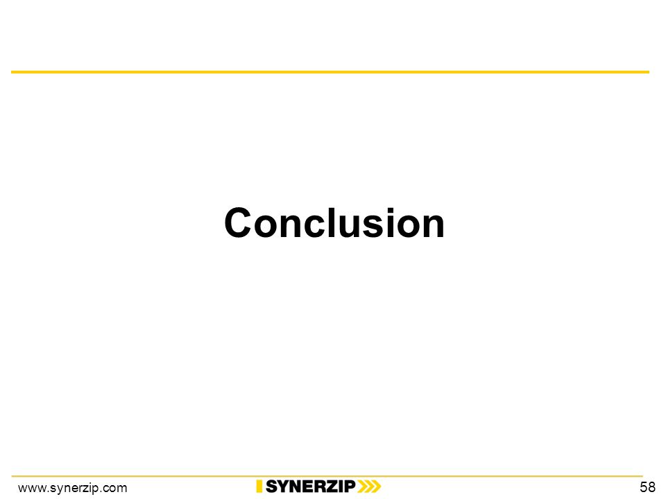 www.synerzip.com Conclusion 58