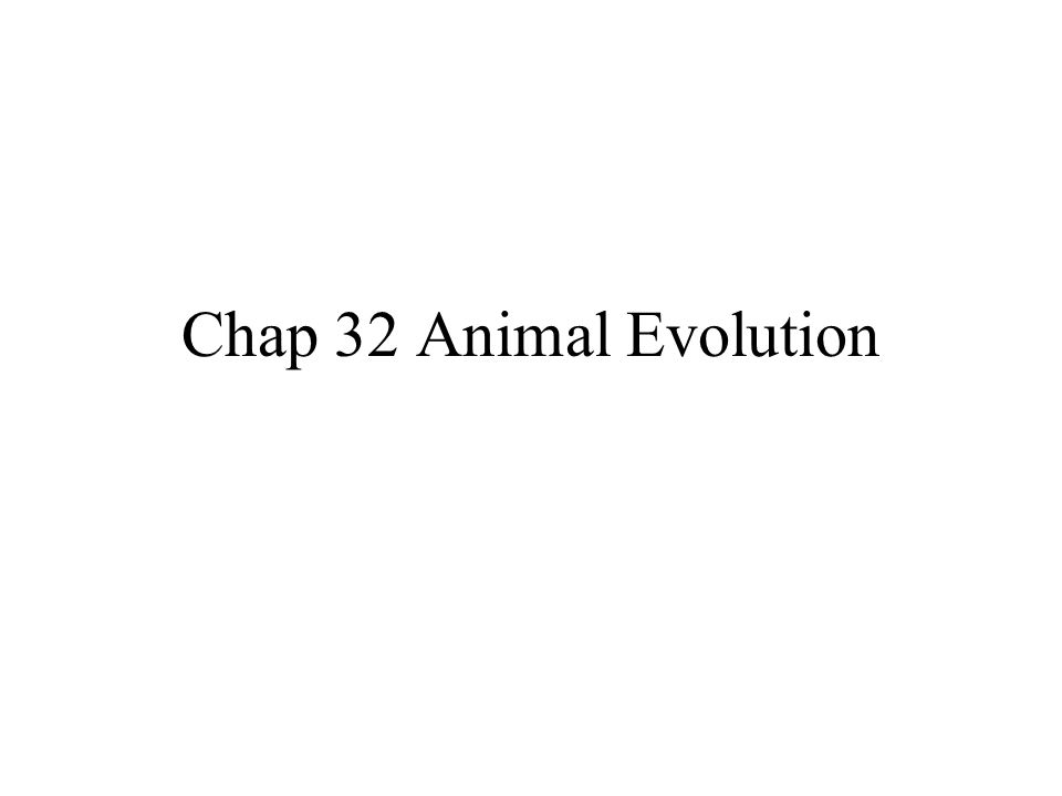 Chap 32 Animal Evolution