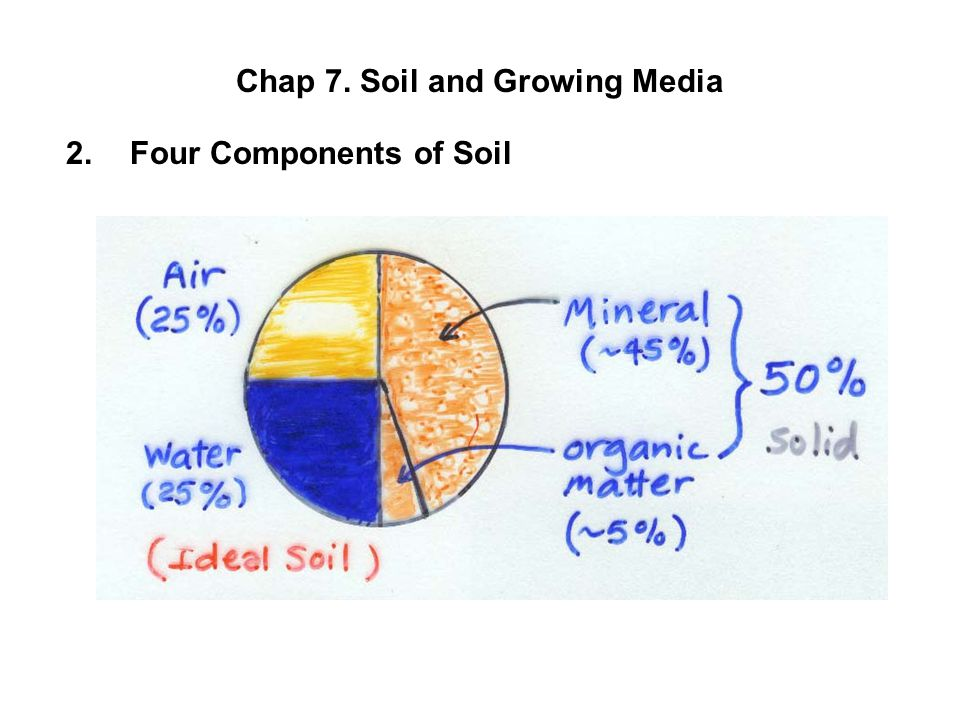 Chap 7. Soil and Growing Media 2.Four Components of Soil