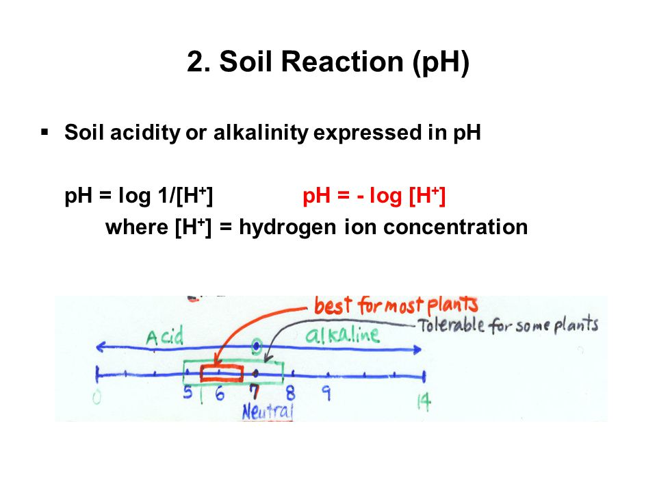 2. Soil Reaction (pH)  Soil acidity or alkalinity expressed in pH pH = log 1/[H + ]pH = - log [H + ] where [H + ] = hydrogen ion concentration
