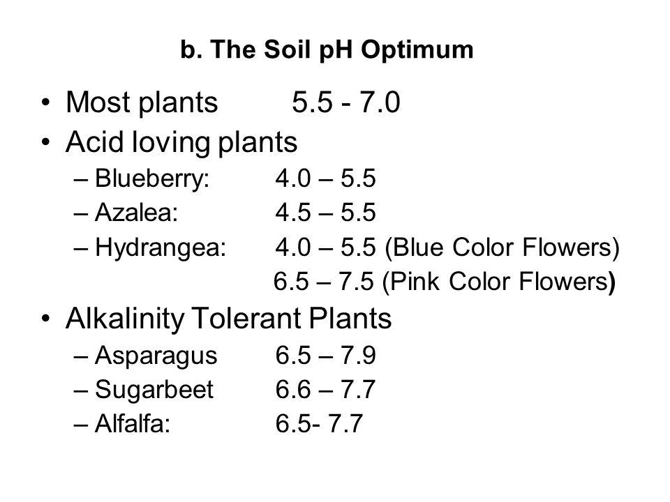 b. The Soil pH Optimum Most plants5.5 - 7.0 Acid loving plants –Blueberry:4.0 – 5.5 –Azalea:4.5 – 5.5 –Hydrangea:4.0 – 5.5 (Blue Color Flowers) 6.5 –
