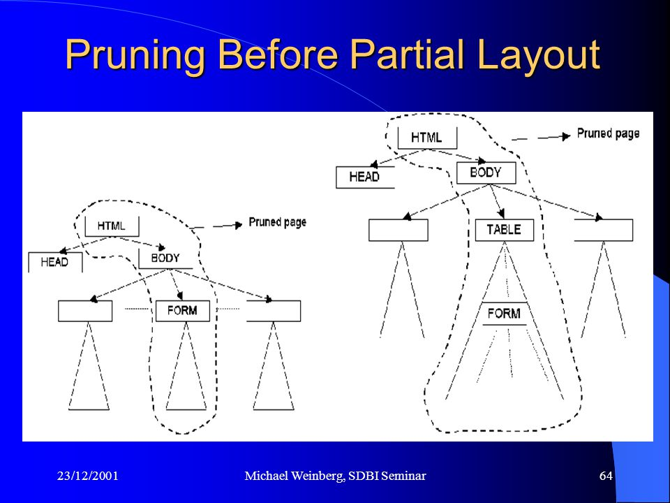 23/12/2001Michael Weinberg, SDBI Seminar64 Pruning Before Partial Layout