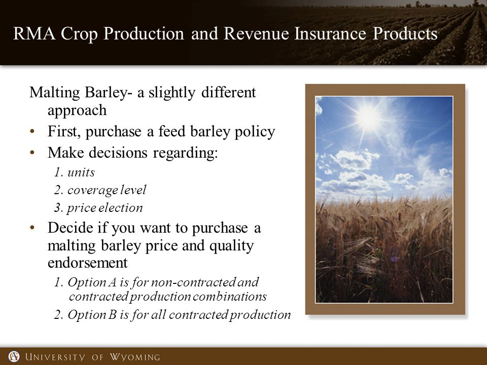 RMA Crop Production and Revenue Insurance Products Malting Barley- a slightly different approach First, purchase a feed barley policy Make decisions regarding: 1.