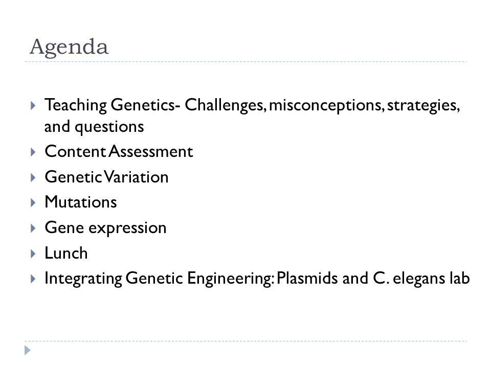 Stephen Friend et al.2002 Sci. Am.