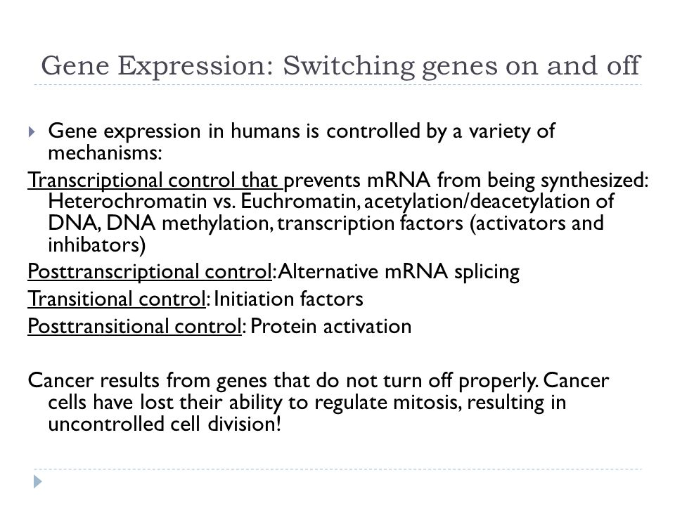 Gene Expression: Switching genes on and off  Gene expression in humans is controlled by a variety of mechanisms: Transcriptional control that prevents mRNA from being synthesized: Heterochromatin vs.