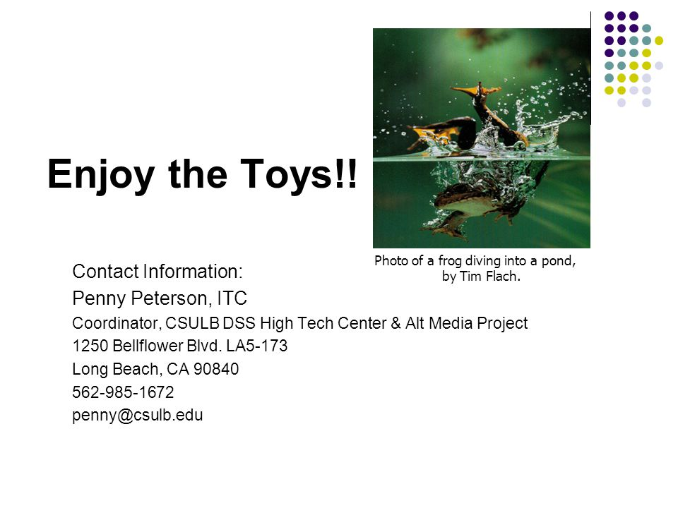 Enjoy the Toys!.