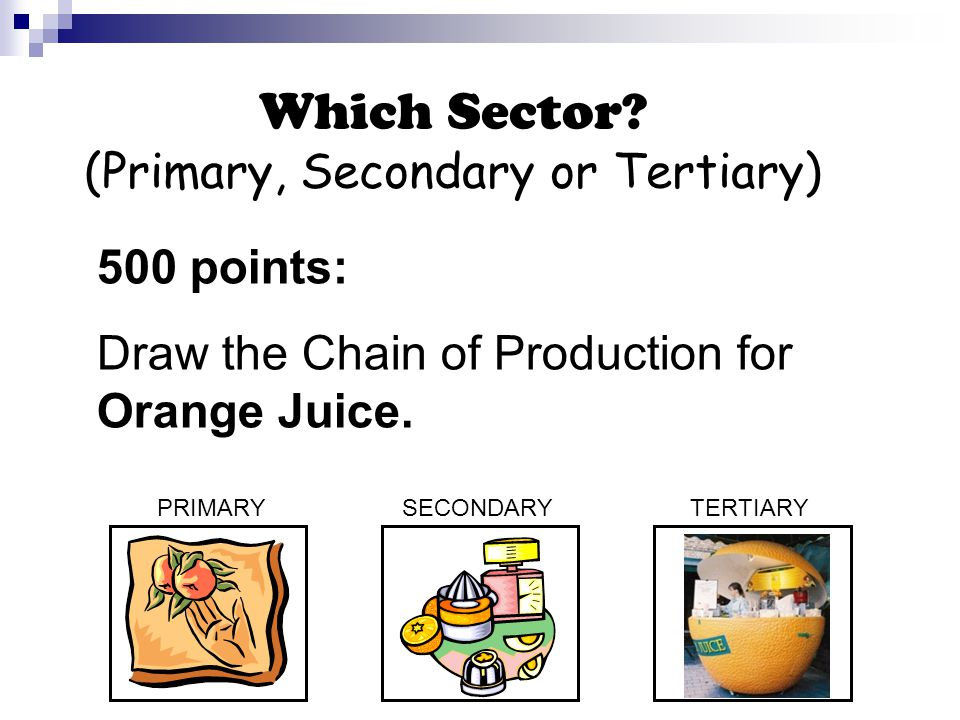 Which Sector.
