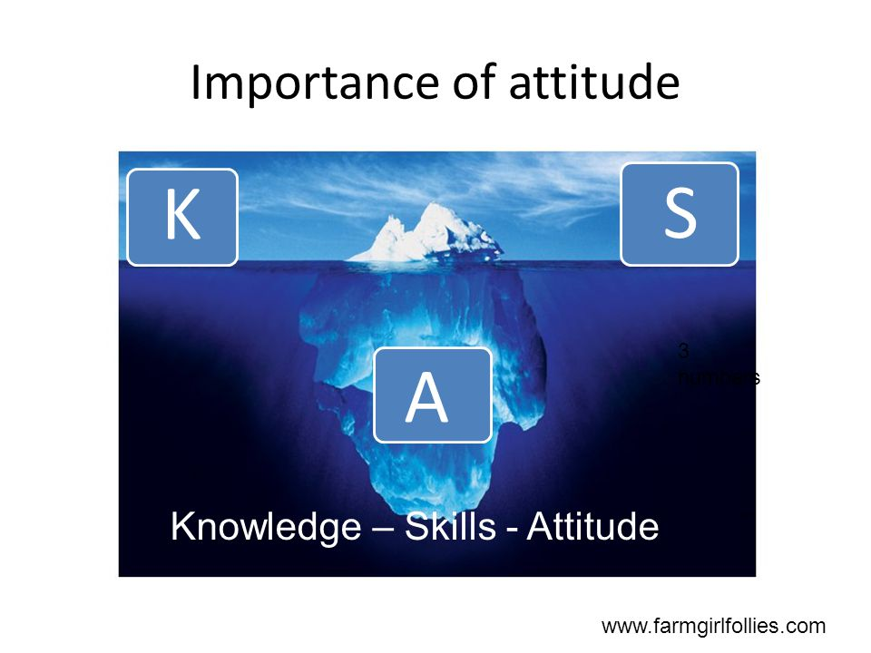 Importance of attitude www.farmgirlfollies.com Knowledge – Skills - Attitude K S A 3 numbers