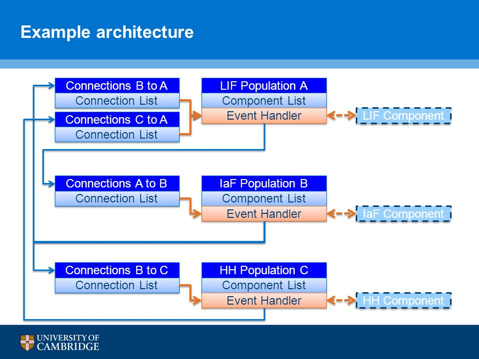 Example architecture LIF Population A Component List LIF Component Connections B to A Connection List Connections C to A Connection List Event Handler IaF Population B Component List IaF Component Connections A to B Connection List Event Handler HH Population C Component List HH Component Connections B to C Connection List Event Handler