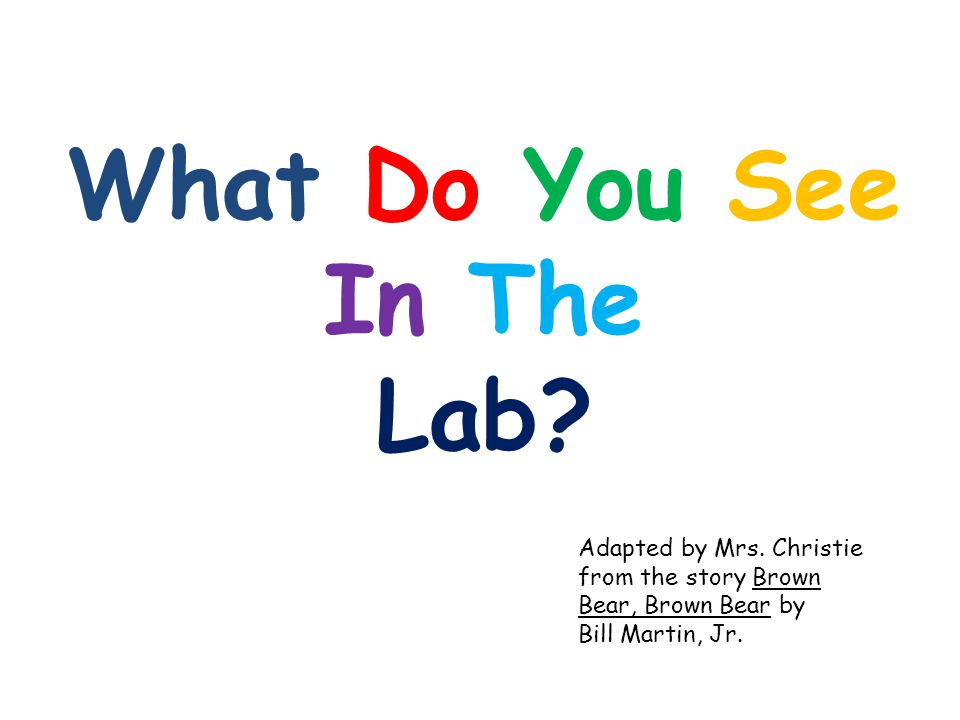 What Do You See In The Lab. Adapted by Mrs.