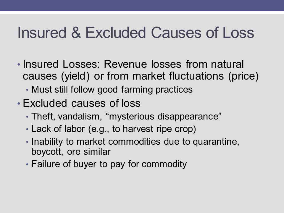 Insured & Excluded Causes of Loss Insured Losses: Revenue losses from natural causes (yield) or from market fluctuations (price) Must still follow good farming practices Excluded causes of loss Theft, vandalism, mysterious disappearance Lack of labor (e.g., to harvest ripe crop) Inability to market commodities due to quarantine, boycott, ore similar Failure of buyer to pay for commodity