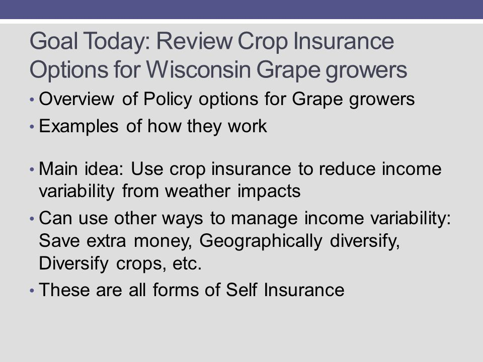 Goal Today: Review Crop Insurance Options for Wisconsin Grape growers Overview of Policy options for Grape growers Examples of how they work Main idea: Use crop insurance to reduce income variability from weather impacts Can use other ways to manage income variability: Save extra money, Geographically diversify, Diversify crops, etc.